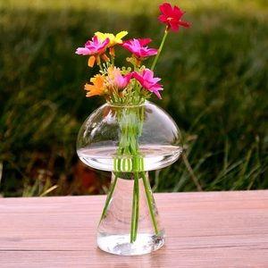 Other - Mushroom Glass Vase, Terrarium